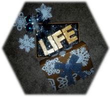 LifeGift.jpg