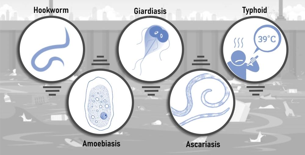 Diseases(3)